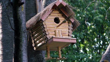 скворечник для птиц своими руками