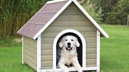 Строим будку для собаки. Чертежи