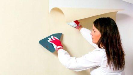Как правильно поклеить обои на стенах и потолке: пошаговая инструкция проведения работ от «А» до «Я»