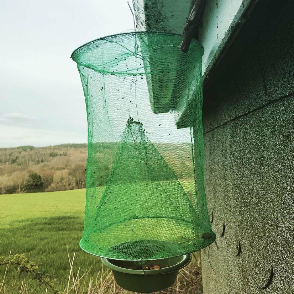 Ловушка для мух изготовленная из сетки и металлических колец.